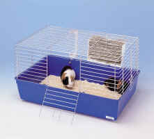 A guinea pig in its cage